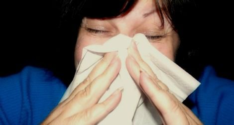 Five Surprising Facts About the Common Cold   Science
