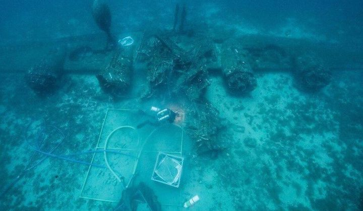 Human Remains Uncovered WWII Plane Wreck