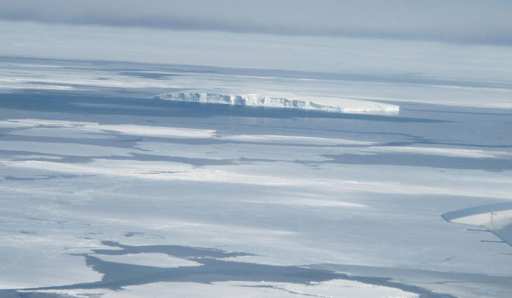 The creation of a marine protected area in the Ross Sea of Antarctica, an area of very high biodiversity, is the result of an agreement among 25 governments.