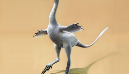 Image: New dinosaur looks like odd mix of duck, croc, ostrich, swan