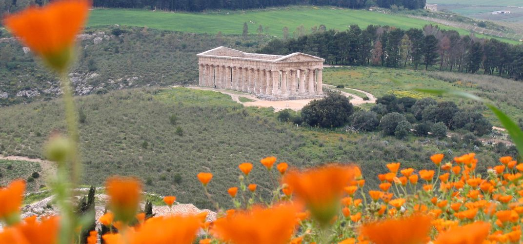 The Temple of Segesta in western Sicily is situated amid a landscape of wildflowers during the spring.