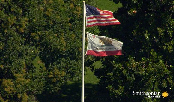 Preview thumbnail for video'How Did a Grizzly Bear Get on California's Flag?
