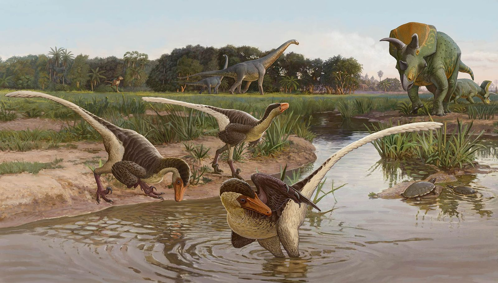 New Feathered Carnivorous Dinosaur Found in New Mexico
