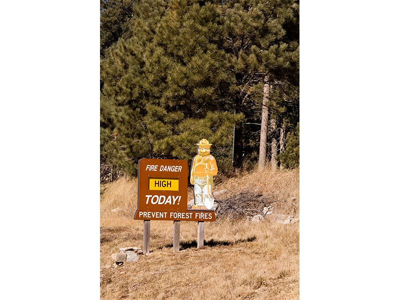 fire danger and Smokey sign