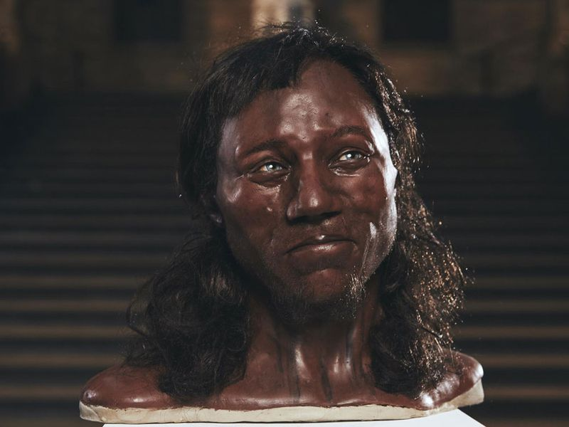 cheddar_man_for_web.jpg