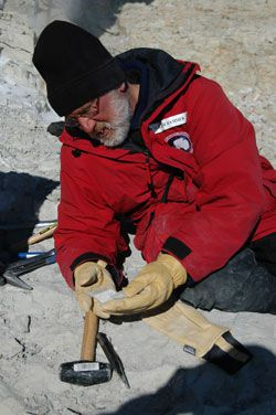20110520104026william_hammer_antarctica.jpg