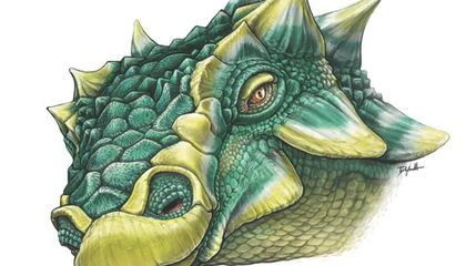 Introducing 'Zuul,' an Ankylosaur That Could Really Make Your Ankles Sore