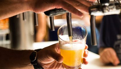 Scientists Brew a Hoppy Beer Without the Hops